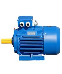 Электродвигатель АИР112MB8, 3 кВт /750 об.мин, Im1081